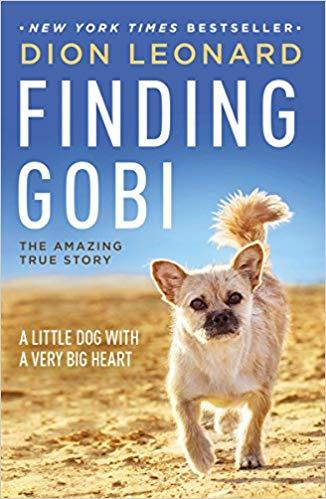 Finding Gobi Zoom
